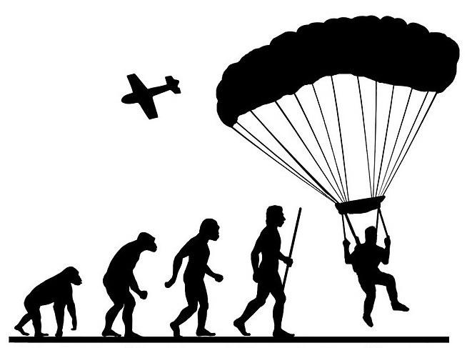 661x487 Human Evolution