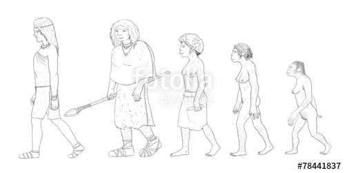 500x252 Human Evolution, Female Stock Photo And Royalty Free Images