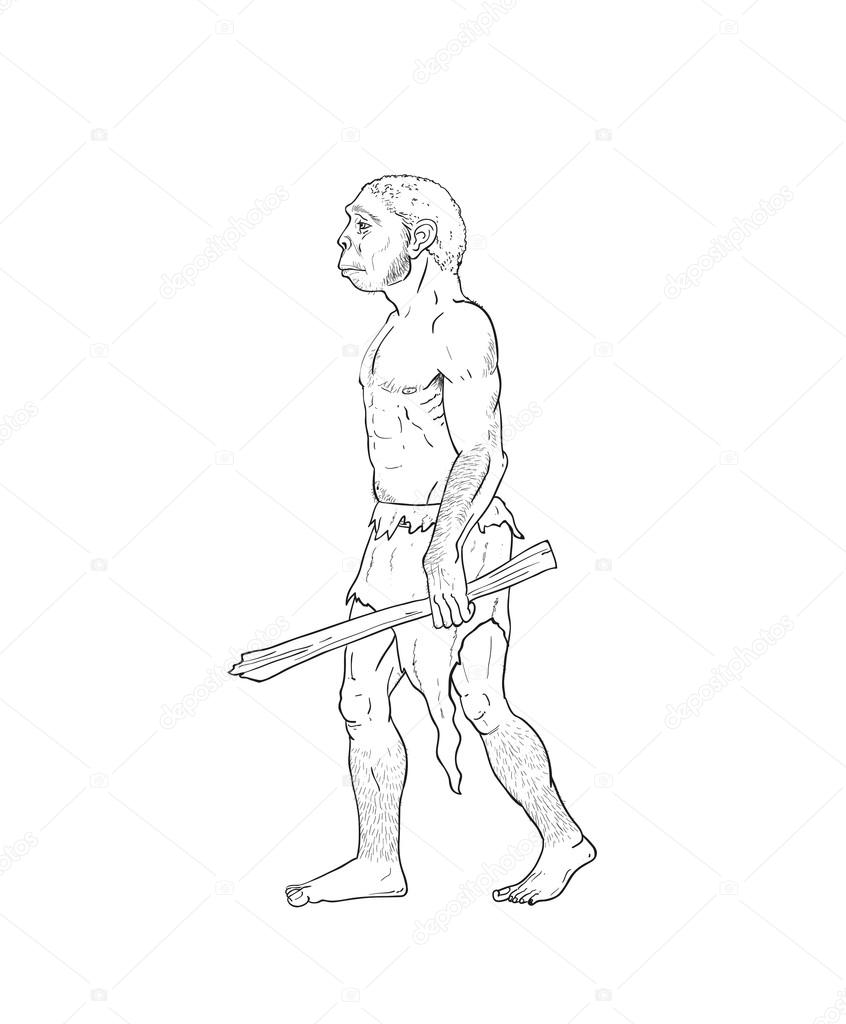 Human Evolution Drawing at GetDrawings.com | Free for ...