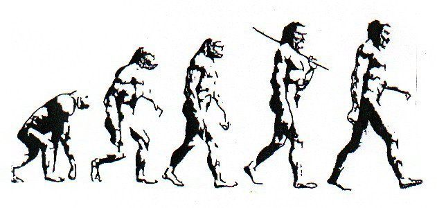 631x300 The Theory Of Evolution Does Not Apply To Modern Human Beings