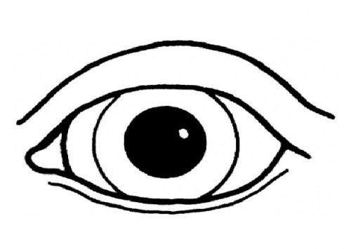 500x355 Human Eye Coloring Pages Free Coloring Pages
