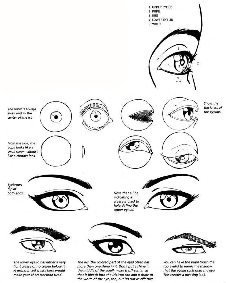 730x911 How To Draw Female Eyes Step By Step Online Drawing Lessons