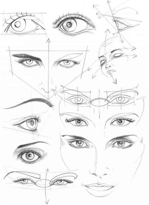 Human Eyes Drawing At Getdrawings Com Free For Personal