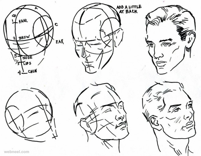 659x512 drawing how to draw a face outline with how to draw a facehugger