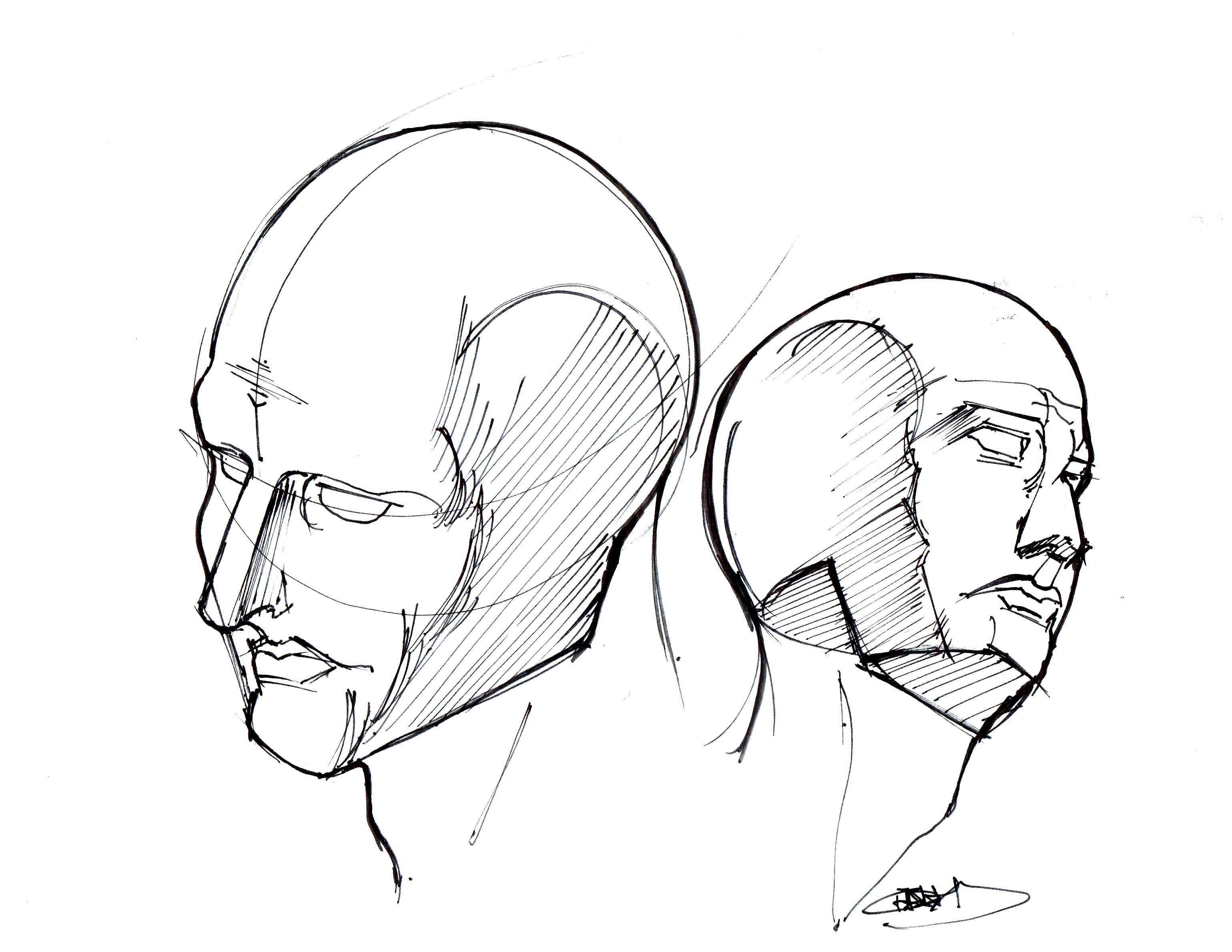 3078x2380 Head Studies Lineweights