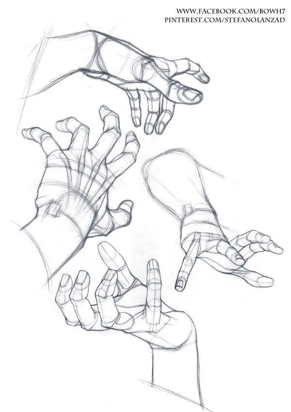 Human Hands Drawing