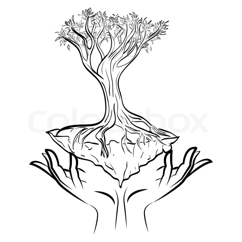 800x800 Abstract Illustration With Human Hands Holding A Tree Stock