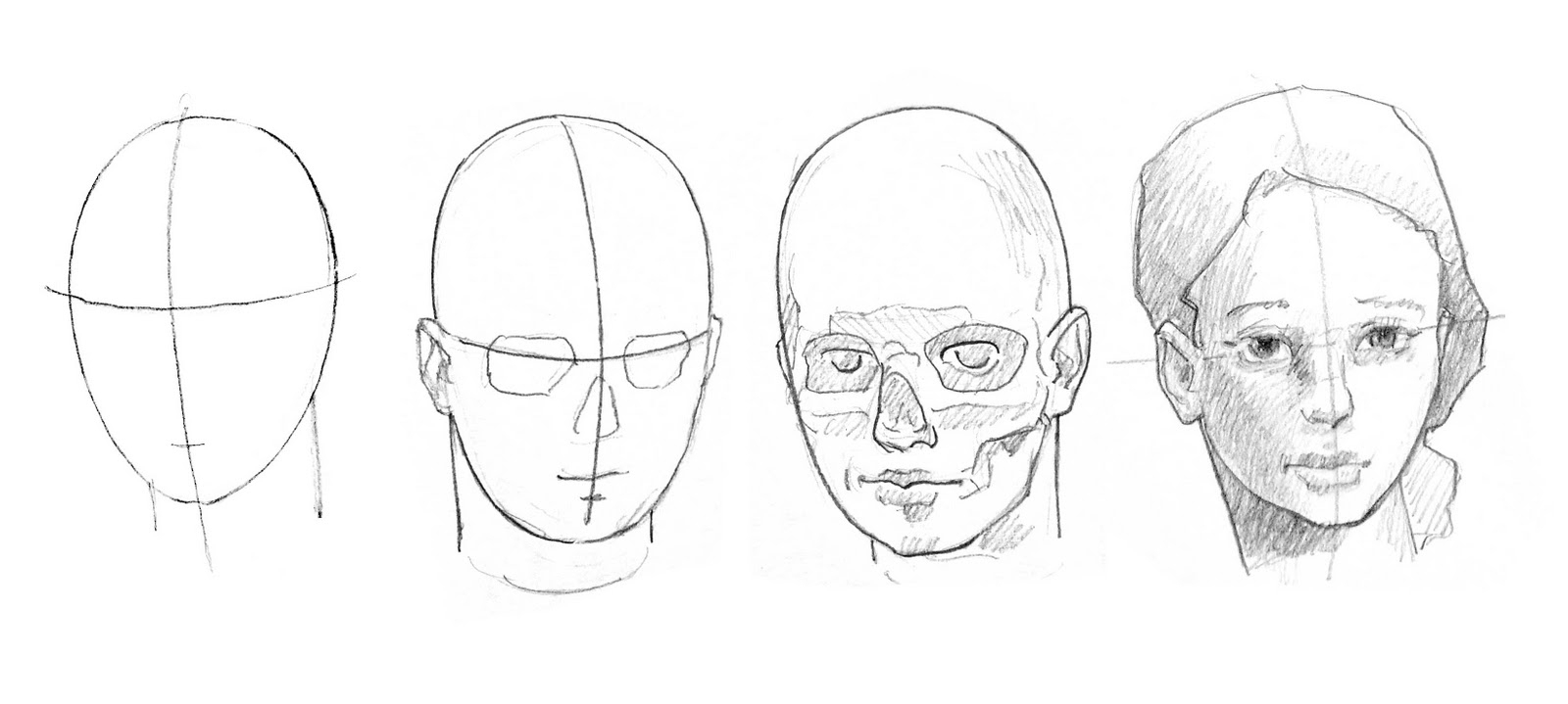 Human Head Anatomy Drawing