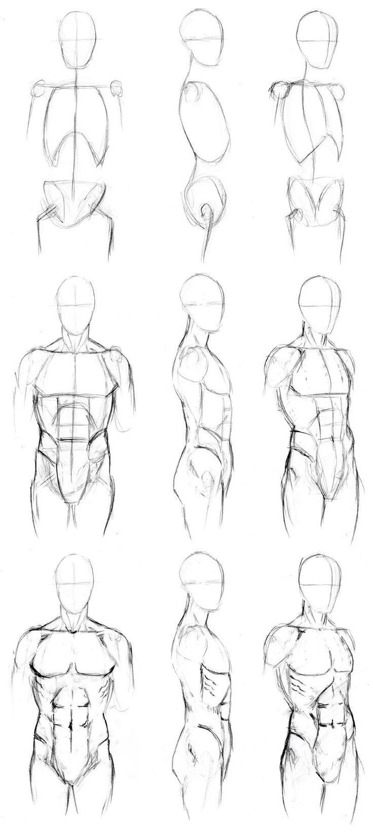 736x1656 Drawing Human Anatomy Inspiring Learn To Draw Human Anatomy