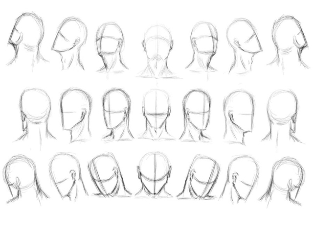 640x480 How To Draw The Human Head Draw As A Maniac