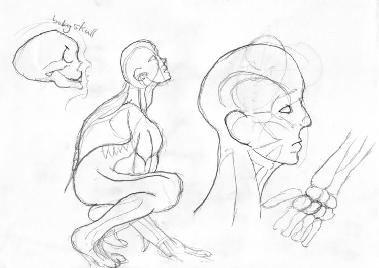 746x528 Sketchbook Human Anatomy Study