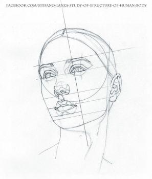 297x350 Studiu De Stefanolanza Art Drawings, Anatomy