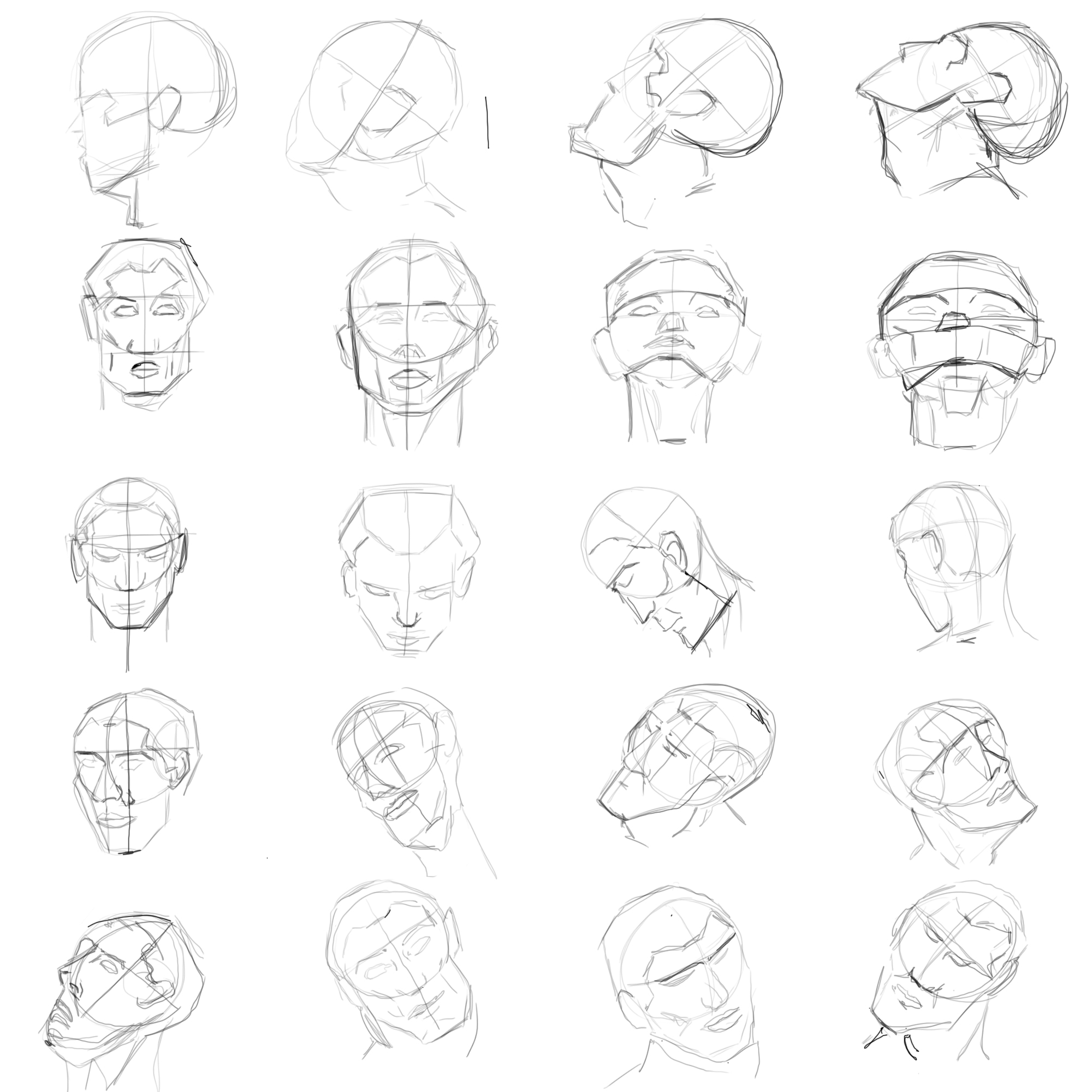 2000x2000 Human Head Drawing