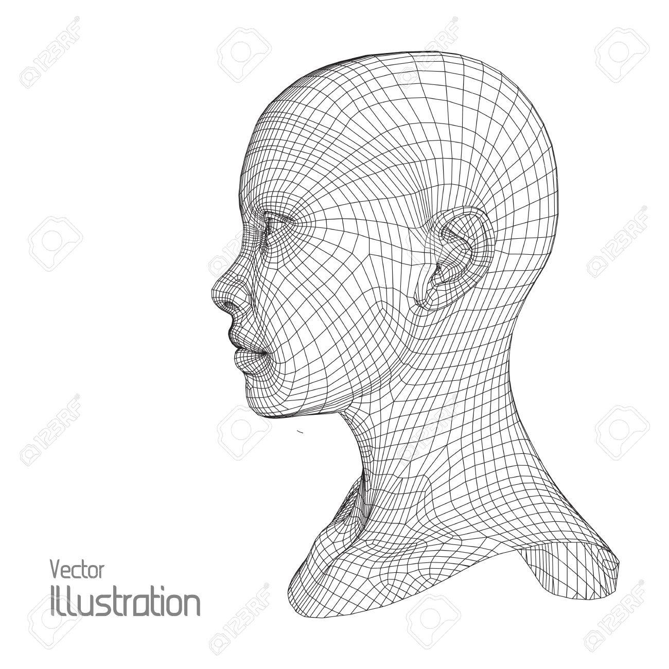 1300x1300 Head Of The Person From A 3d Grid. Human Head Wire Model. Human