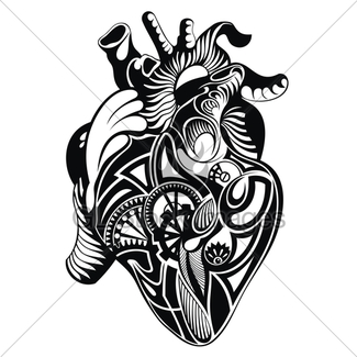 325x325 Human Heart Drawing Gl Stock Images