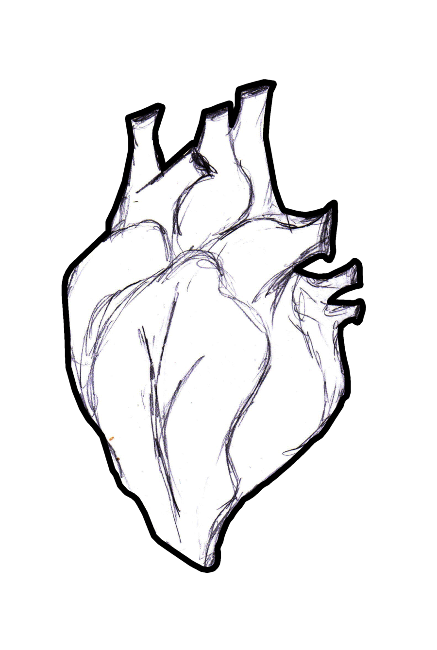 900x1339 Human Heart Outlined By Thestrange87