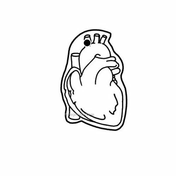 Human Heart Drawing Outline At Getdrawings Free For Personal