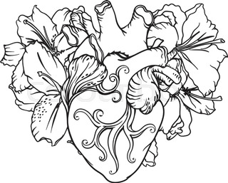 320x257 Set Of Stylized Anatomical Human Heart And White Lilies Drawings