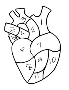 235x305 Human Heart Pattern. Use The Printable Outline For Crafts