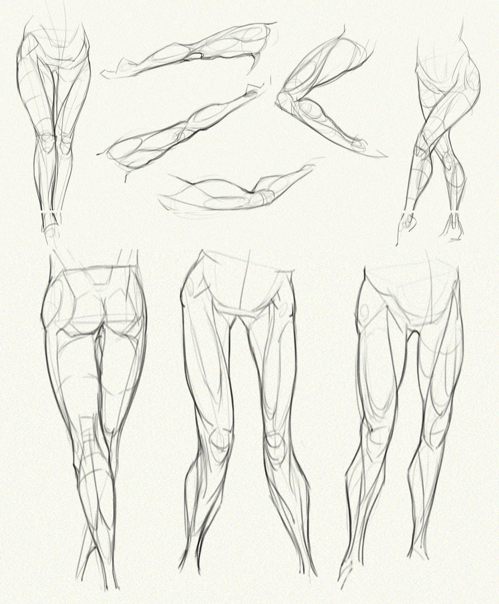 1024x1239 Anatomy Challenge, Part 04