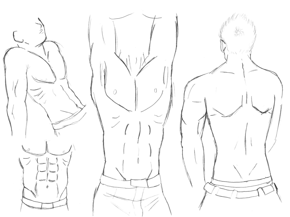 Human Male Body Drawing At Getdrawings Com Free For Personal Use