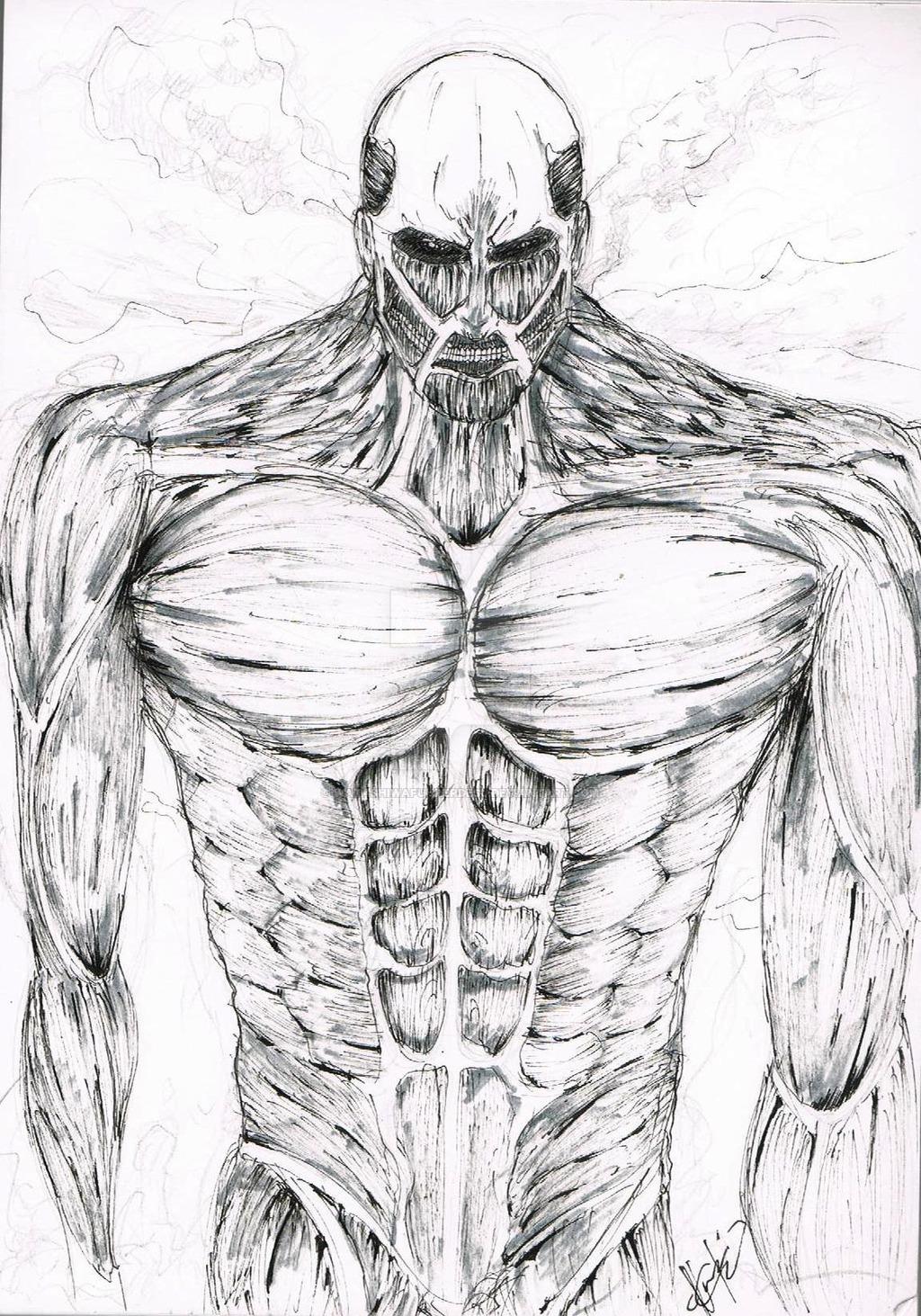 1024x1463 Colossal Titan Fansketch~ By Watashiwafuhrerdesu