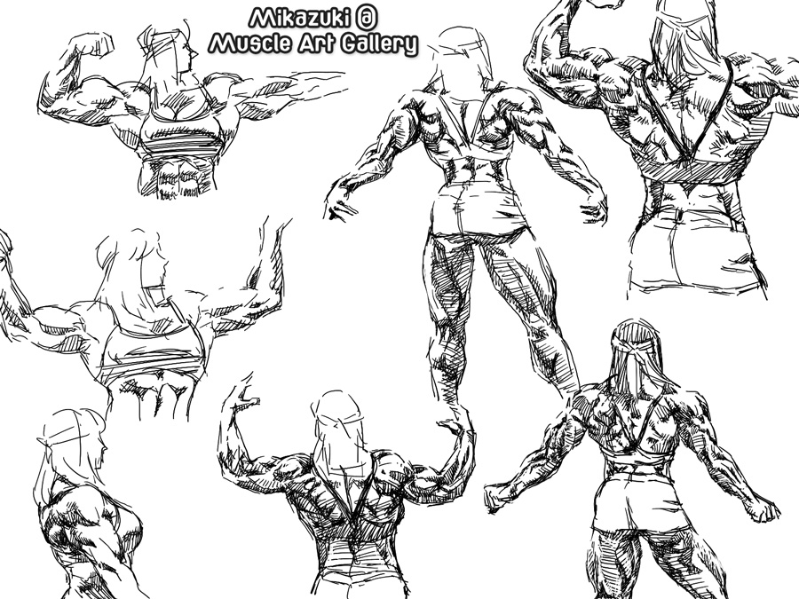 The Best Free Muscle Drawing Images Download From 50 Free Drawings
