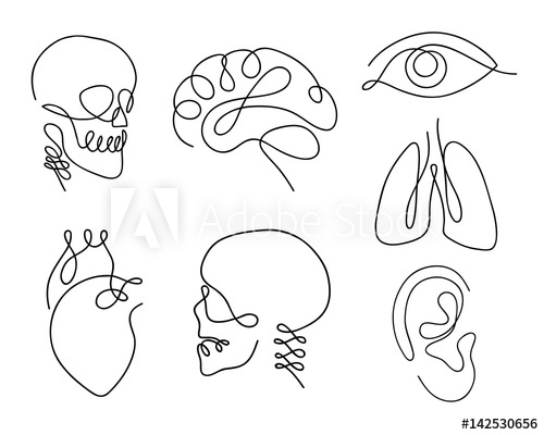 500x400 One Line Human Organs Set Design Silhouette.logo Design. Hand