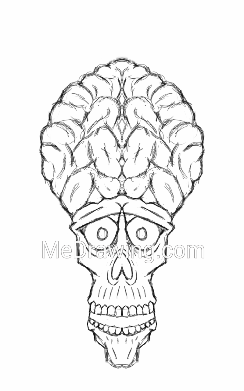 800x1280 Skull With Giant Brain Pencil Sketch