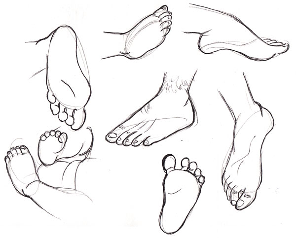 600x483 Human Anatomy Fundamentals How To Draw Feet