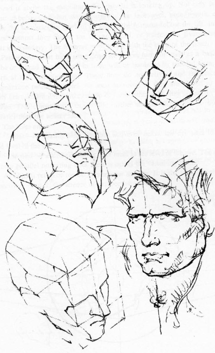 736x1205 Perspective Drawing Of Face Best Human Head Ideas
