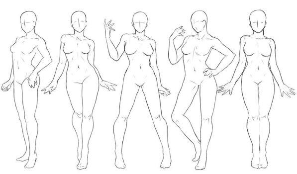 597x350 Female Anatomy Draw Stock Photo Typical Pose