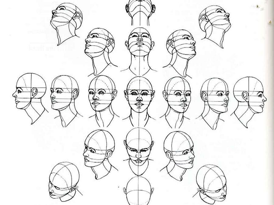 900x675 How To Draw Human Head Sketch Human Head, Profile