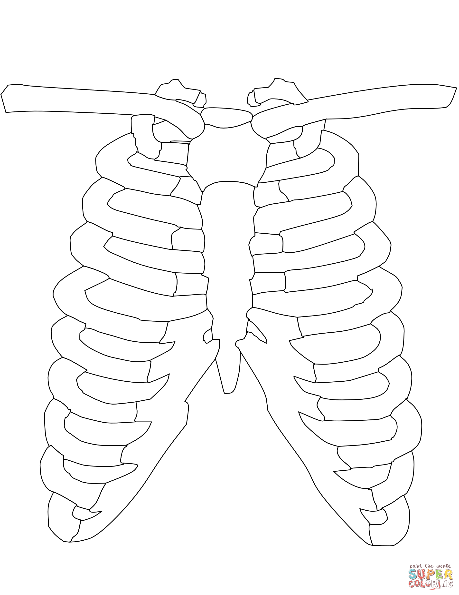 1885x2440 Ribs Coloring Page Free Printable Coloring Pages