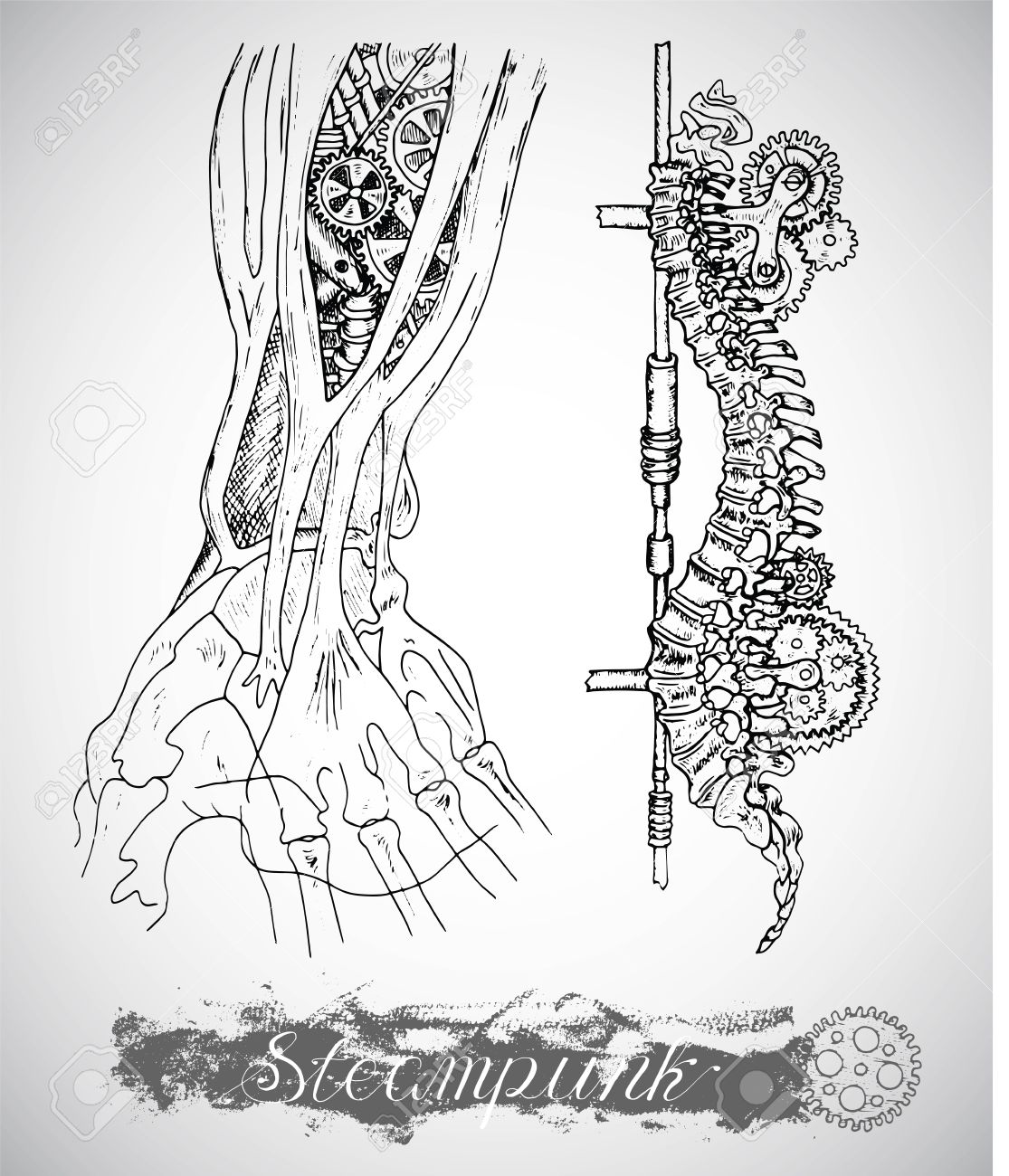 1115x1300 Human Anatomy Hand And Backbone With Vintage Mechanism In Steam