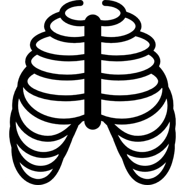 626x626 Human Ribs Bones Icons Free Download