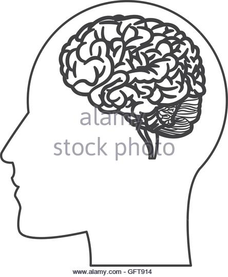 444x540 Human Brain Within Head Silhouette Stock Photos Amp Human Brain