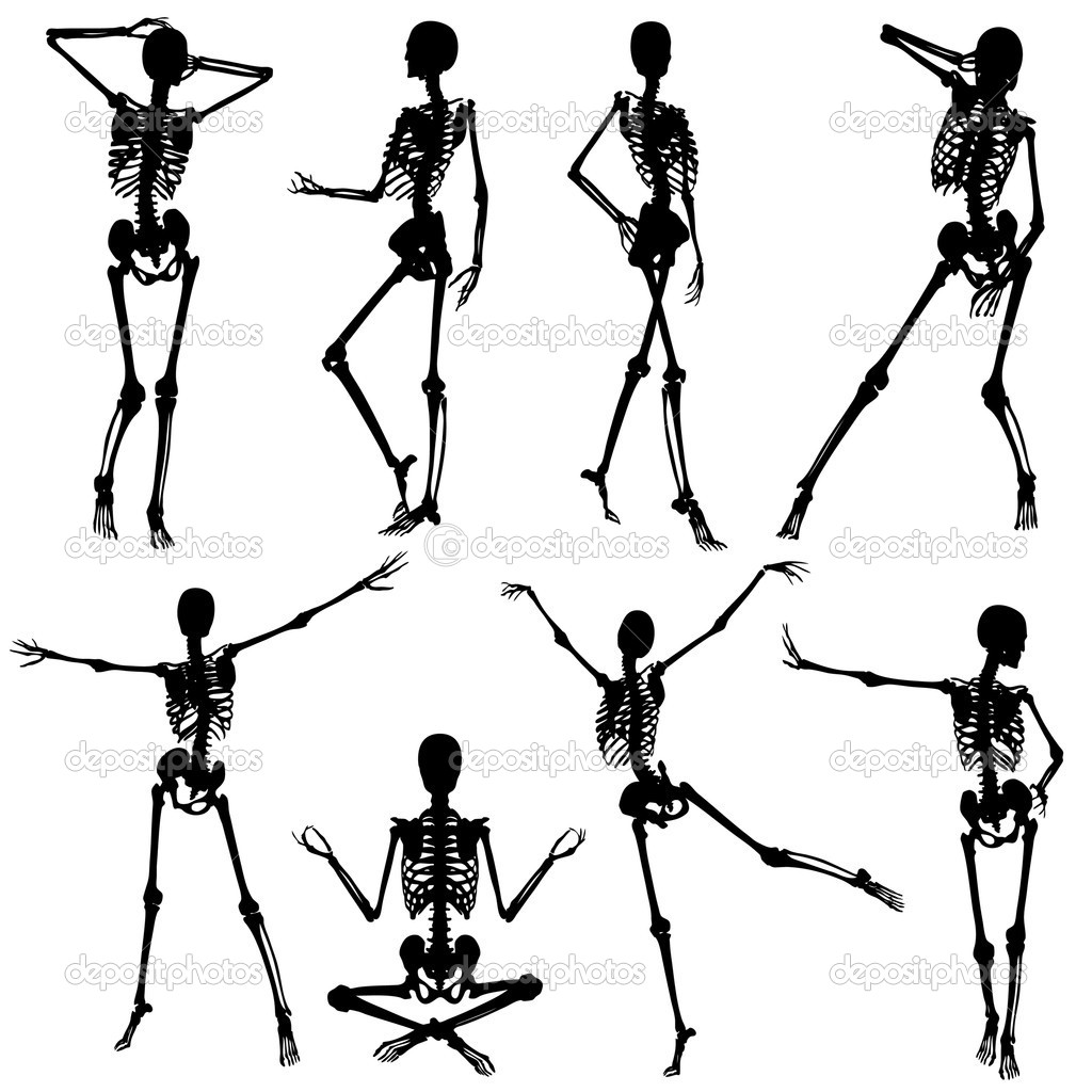 1024x1024 Human Skulltons Of Woman In Poses Halloween Skeleton Silhouette