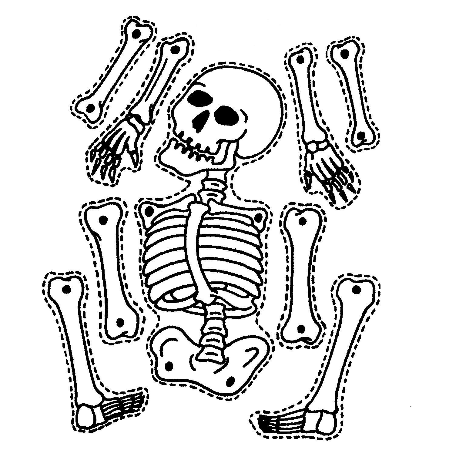 1481x1484 Drawn Skeleton Printable Halloween