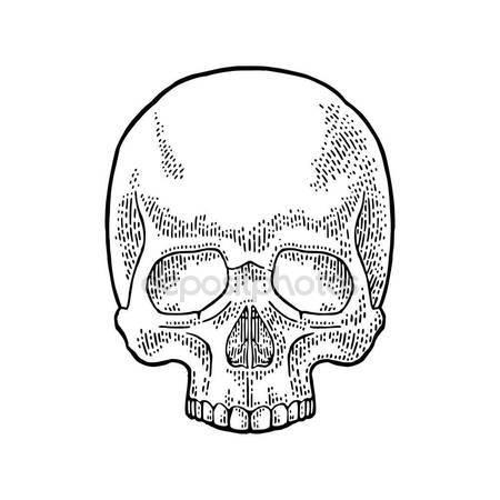450x450 Human Skeleton Running Vector Illustration Sketch Hand Drawn