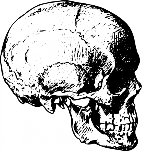 497x531 Cool Skull Clip Art (And Funny!)