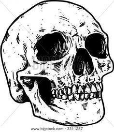 236x273 Human Skull Drawing Explore New Start Downloading