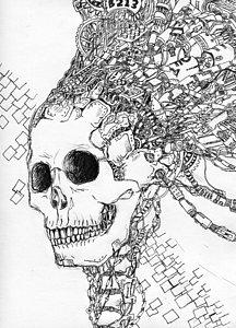 216x300 Human Skull Drawings