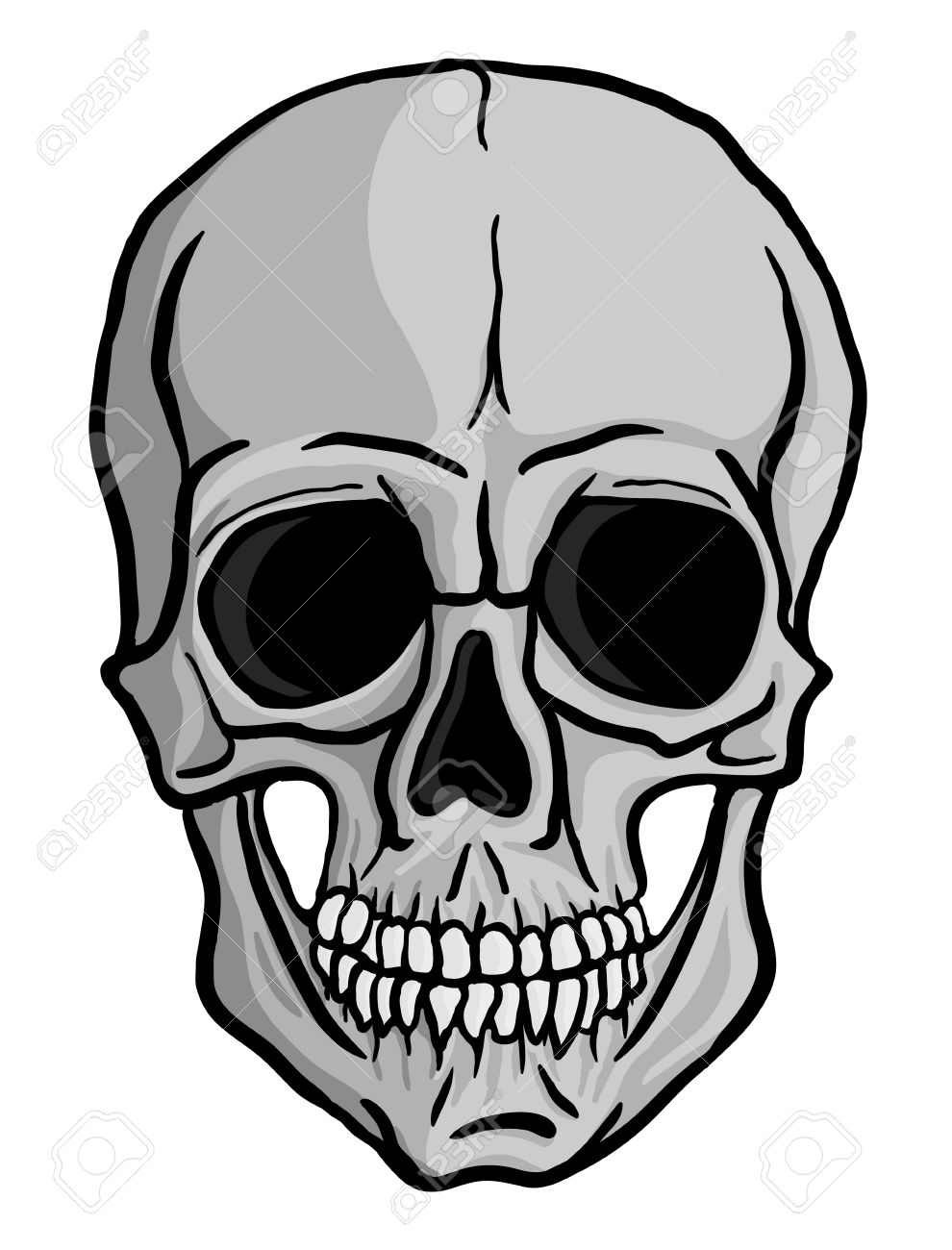 990x1300 Human Skull Isolated On White Freehand Drawing Royalty Free