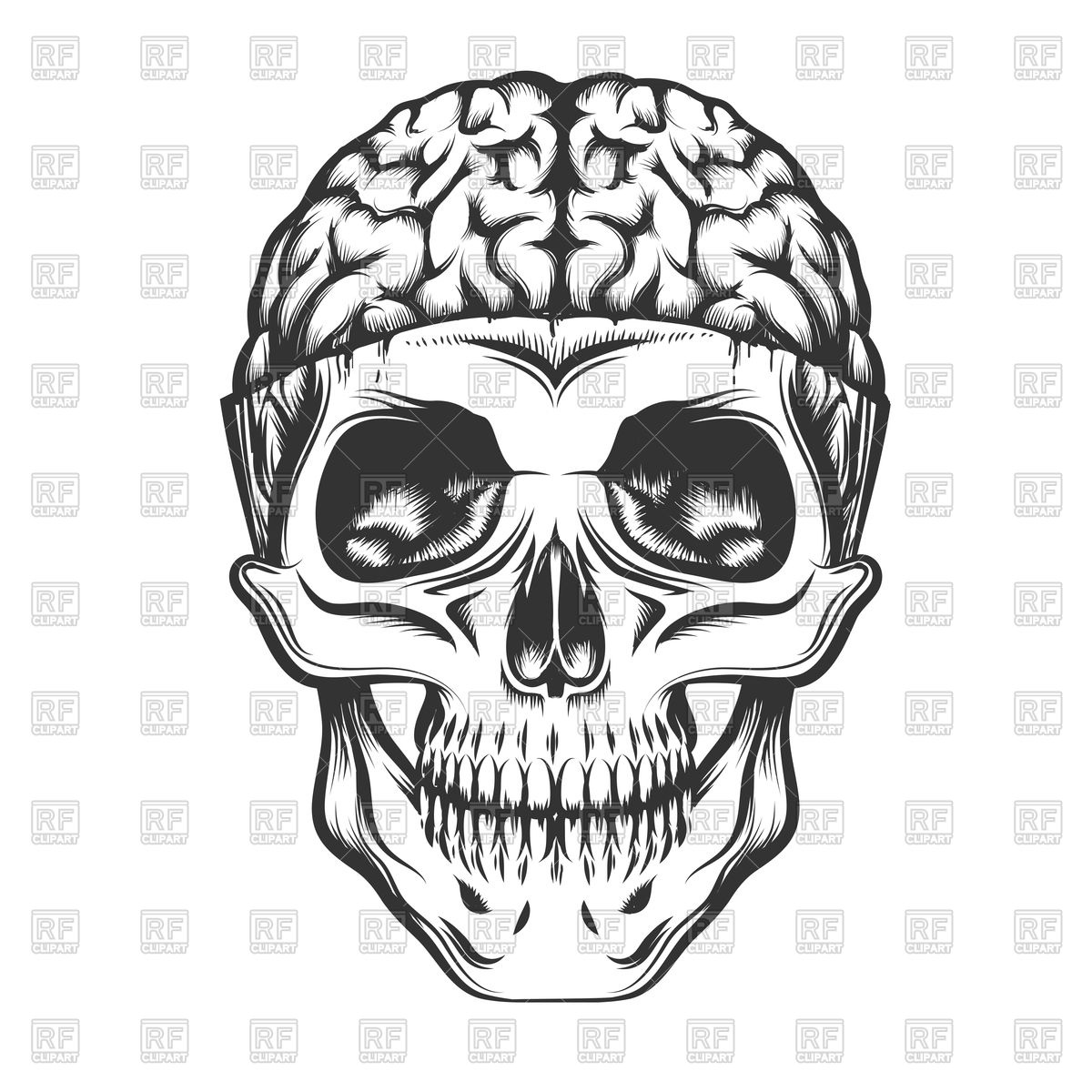 1200x1200 Human Skull With Open Brain Royalty Free Vector Clip Art Image