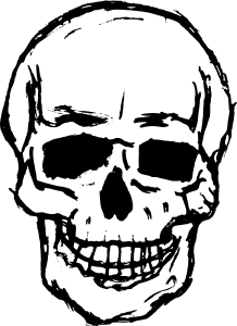 218x300 8 Skull Drawing Vector (Svg, Png Transparent)
