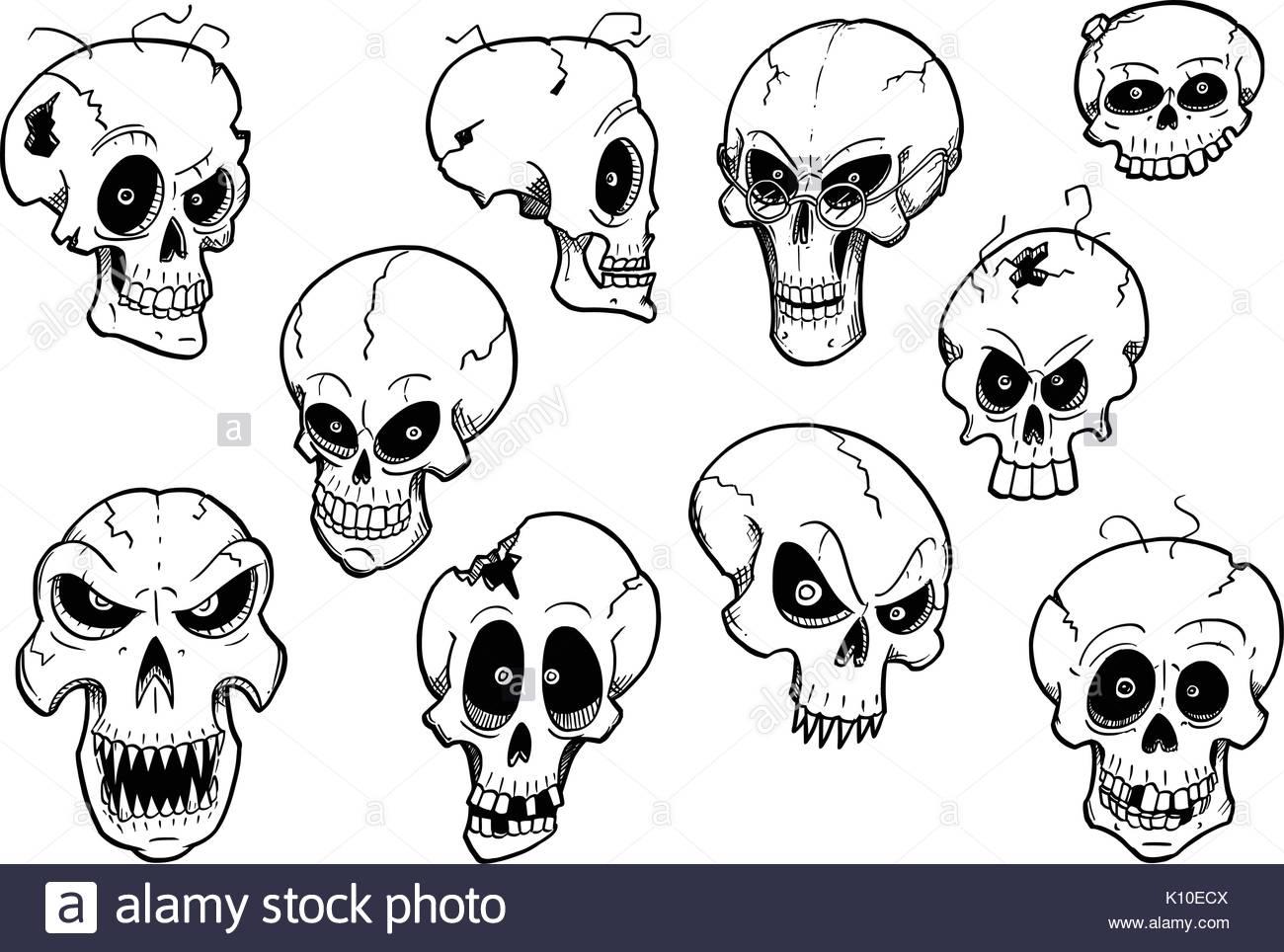 1300x964 Skull Drawing Stock Photos Amp Skull Drawing Stock Images