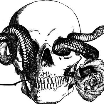 354x354 Human Skull Snake Tattoo Art Rose Png From Digitalgraphicsshop