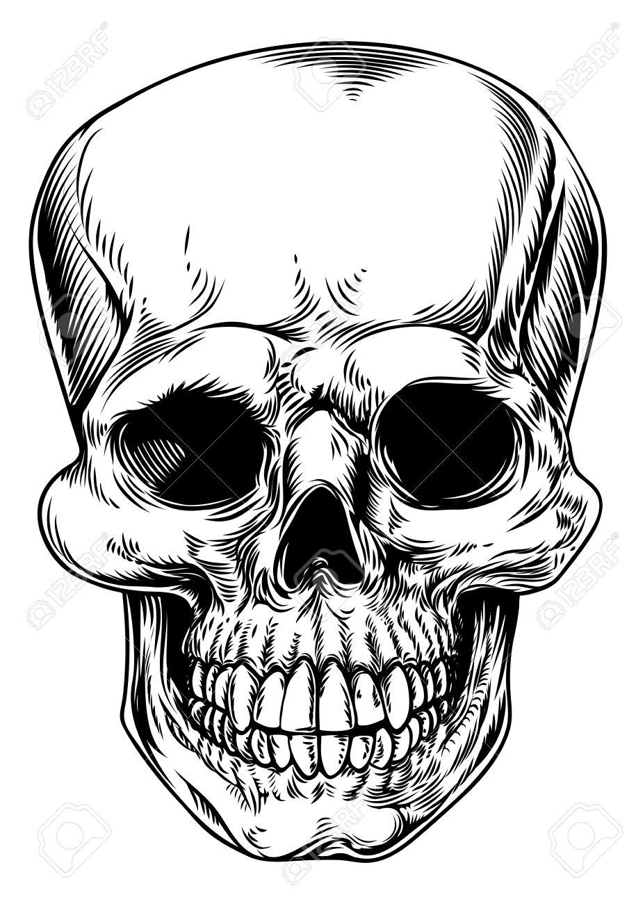 915x1300 A Vintage Human Skull Or Grim Reaper Deaths Head Illustration Clip