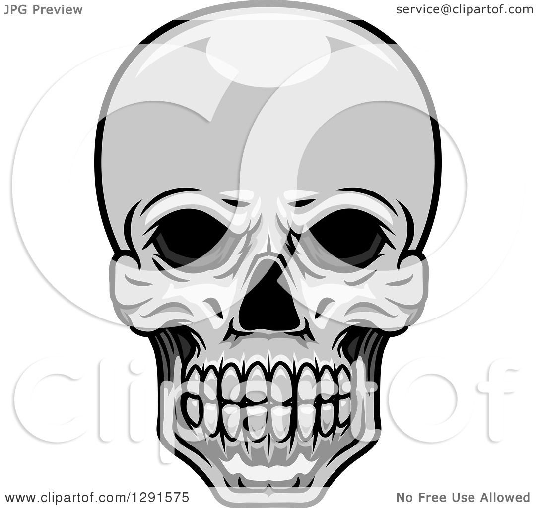 1080x1024 Clipart Of A Grayscale Human Skull
